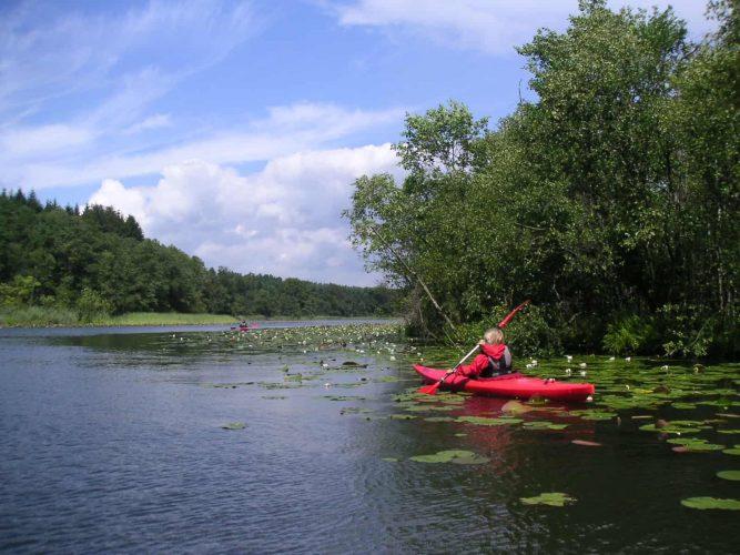 Granzow Seerosen Paddeln